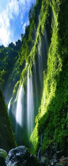 Madakaripura Waterfall, Probolinggo, East Java, Indonesia - Madakaripura is a sacred visiting area comprising lines of waterfalls where its center reaches a height of 200 meters from the bottom.