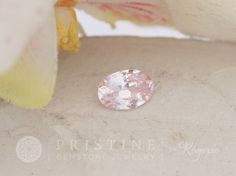 Pastel Pink Sapphire 8x6mm Oval for Custom Engagement Ring Wedding Ring Bridal Ring by Rogerio Graca