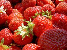 Erdbeeren für Wellensittiche