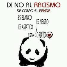Say no to racism! Be like the panda! He is white He is black He is asian And he is fatty! Panda Images, Spanish Quotes, Great Quotes, Funny Animals, Hilarious, Lol, Humor, Photo And Video, Sayings
