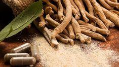 """Ashwagandha se numără printre așa-numitele plante  """"adaptogene"""", cele mai cunoscute în medicina ayurvedică, medicină tradițională indiană. În medicina ayurvedică, este considerată """"Rasayana"""" (tonic)  grație proprietății sale adaptogene,  """"Bhalya"""" datorită capacității sale de creștere a tonusului/forței, și  """"Vajikarana"""" pentru proprietățile sale afrodisiace. Ayurvedic Herbs, Ayurveda, Failure To Thrive, Back To The Gym, Healthy Lifestyle Quotes, Pause, Stress And Anxiety, Immune System, Herbalism"""