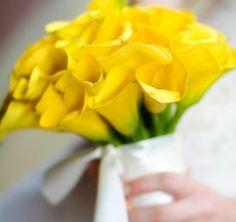 Bride's Bouquet Of Yellow Calla Lilies Calla Lily Bridesmaid Bouquet, Diy Wedding Bouquet, Bride Bouquets, Bridesmaids, Lys Calla, Calla Lillies, Lilies, Yellow Flowers, Wedding Bouquets