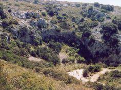 Garrigue dans l'Herault guide touristique de l'Hérault