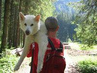 German Wandern: Family Hiking in Bavaria | My Family Travels