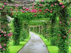 fotos de jardines bonitas - Buscar con Google