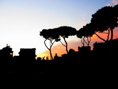 Sunset in Rome - Summer 2015