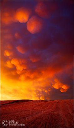 Mammatus Eruption, Palouse, Washington