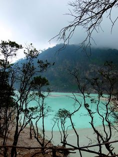 Kawah Putih, West Java - Indonesia