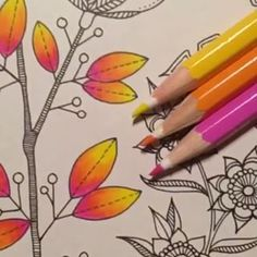 Learning to Draw? You're Gonna Need a Pencil - Drawing On Demand Colored Pencil Tutorial, Colored Pencil Techniques, Colouring Pages, Coloring Books, Coloring Tips, Colouring Techniques, Drawing Techniques, Johanna Basford Coloring Book, Pencil Drawing Tutorials