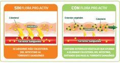 Descubre como bajar tu colesterol, como lo ha hecho todos un pueblo en Madrid!! No te lo pierdas porque tiene premio. Flora ProActiv