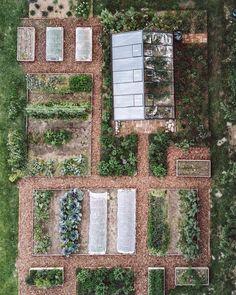 Cottage Garden Plants, Diy Garden, Dream Garden, Balcony Garden, Garden Bed, Vegetable Garden Design, Vegetable Gardening, Gardening Supplies, Before And After Pictures