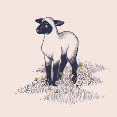 lamb nursery illustration inktober day Snow 2019 ink drawing sheep daisies suffolk shropshire art artwork ink draw blackwork line work spot farm animals grass texture ba black sheep Lamb Drawing, Sheep Drawing, Sheep Illustration, Character Illustration, Black Sheep Tattoo, Lamb Tattoo, Animal Line Drawings, Lamb Nursery, Sheep Art