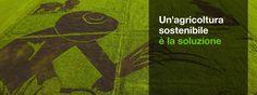 Soluzioni | Greenpeace Italia AGRICOLTURA SOSTENIBILE