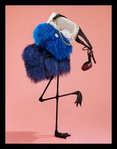 Birds, shoes and handbags. http://www.everydayworkshop.com/wp-content/uploads/2009/01/amica1.jpg