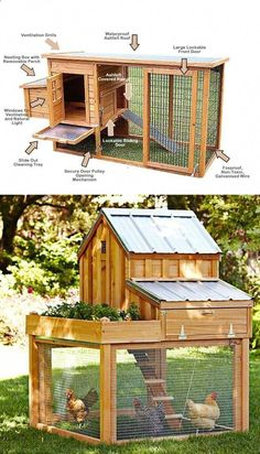 Chicken Coop - Building a chicken coop does not have to be tricky nor does it have to set you back a ton of scratch.Making the decision and discovering how to build backyard chicken coops, will be one of the best-made decisions of your life.Say hello to f Chicken Coop Designs, Small Chicken Coops, Chicken Barn, Diy Chicken Coop Plans, Portable Chicken Coop, Backyard Chicken Coops, Building A Chicken Coop, Backyard Farming, Chickens Backyard
