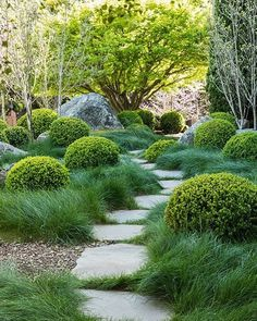 SCOTT SHRADER You are in the right place about wild Planting Here we offer you the most beautiful pictures about the Planting fondos you are looking for. When you examine the SCOTT SHRADER part of the Modern Landscaping, Backyard Landscaping, Landscaping Ideas, Mulch Ideas, Natural Landscaping, Amazing Gardens, Beautiful Gardens, Boulder Garden, Garden Cottage