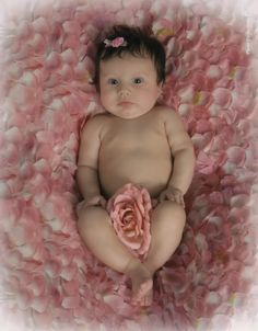 Anne Geddes, sunflower baby | Babiez. | Pinterest | Babies, Anne ...