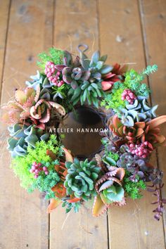 Succulent Wreath - no instruction or information just pic.