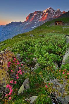 Schmadri Abendstimmung mit Jungfrau Beauty Around The World, Around The Worlds, Switzerland Bern, Lacs, Heart Of Europe, Clear Lake, Swiss Alps, Basel, Beautiful Landscapes