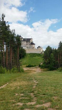 Zamek w Myszkowie