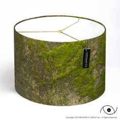 Hey, I found this really awesome Etsy listing at http://www.etsy.com/listing/152143089/lamp-shade-moss