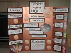 Science Fair Projects Cleaning Pennies | ... house...2 days before the Science Fair...but we survived. Maybe