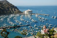 Catalina Island - Dorian & I were here in March 2013; great day trip!