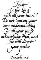 ProVerBs 3:5-6.