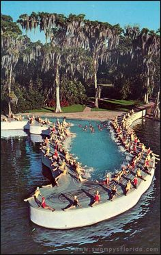 Here's a postcard of the Florida pool built by Dick Pope at his Cypress Gardens to entice films to be produced at the Winter Have site. He specifically was looking to lasso swimming champ and film star, Esther Williams, to put a cinematic spotlight on Cypress Gardens. It worked. Williams made a number of films and a TV special at the attraction.