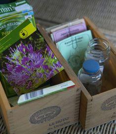 Lasitetun parvekkeen voi muuttaa kukoistavaksi viherhuoneeksi. Siellä viihtyy moni hyöty- ja koristekasvi.Basilika (Ocimum basilicum) viihtyy lasitetulla parvekkeella. Kastele ja suihkuta ahkerasti, ...