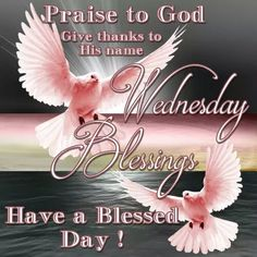 Good Morning, Happy Wednesday. I pray that you have a safe and blessed day!!