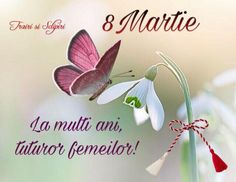 FOTO-MESAJE 8 MARTIE, felicitări | Iubitori de Frumos 8 Martie, Happy Birthday Wishes, Holidays And Events, Place Cards, Place Card Holders, Facebook, Cabinets, Happy Birthday Greetings, Birthday Wishes Greetings