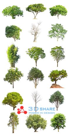 [photoshop][tree] part 19