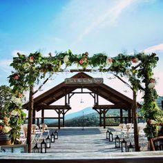 Our Vineyard Wedding