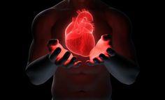 El Corazón de la #PNL ¡El mejor Atajo que conozco para acelerar tu #éxito!  Si quieres ser exitoso en el área que sea (PNL, tu Carrera, Ley de atracción etc..)  Existe un atajo que te llevará de forma mucho más veloz que utilizando el método  Prueba y error, ¿Sábes cuál es ese método que está unido con el Corazón de la PNL?  (Te lo revelaré el Corazón de la PNL más adelante en este post)  Ese método es el de Estudiar a las personas que ya son exitosas en lo