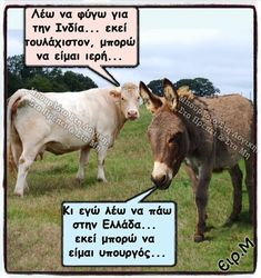 Greek Memes, Funny Greek, Greek Quotes, Funny Images, Funny Photos, Funny Phrases, Comic Pictures, Wise Words, I Laughed