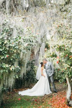 Charleston Wedding Photographer | Legare Waring House Wedding Teaser | http://www.gideonphoto.com/blog , secret garden, spanish moss, grey suit, veil, sage