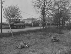 """A US M4 Sherman tank rolls carefully on a road leading to the town of Cheb past the bodies of two German KIAs lying in the field in the foreground. Cheb, known as """"Eger"""" to the Germans, is located in the Czech Republic. It was liberated in March 1945. Note the hole in the helmet of the German on the right."""