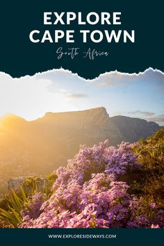 Go off the beaten track and discover the hidden gems of Cape Town. Cape Town South Africa, The Places Youll Go, Track, Gems, Tours, Explore, Mountains, Nature, Branding