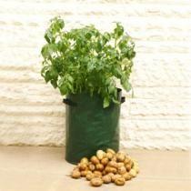 Planter les pommes de terre en sac (Fiches conseils)