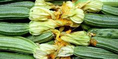 Cooking with squash blossoms