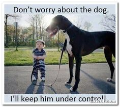 Don't Worry About the Dog i'll keep him under control Funny Pictures and Images