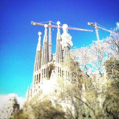 La #sagradafamilia #gaudi #barcelona #bcn #barcelonacity #Barcelonagram #thebarcelonist #movilgrafias #master_shots #earthexclusive #ig_eurasia #igworld #igersrecommendation #travelgram #travelling #igworldclub #catalunyaexperience #catalunya #igersbarcelona #igersoftheday #igerscatalunya #loves_catalunya #loves_spain #lovethem #visitSpain  #turismospain #ok_Catalunya  #barcelonaturisme