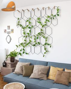 Create an indoor trellis by training your pothos plant to climb up a sculptural, metal frame. Plus, it doubles as wall art! (design by…