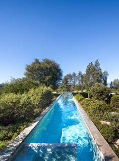 lee residence, calistoga (steven harris architects) / pool by terra ferma