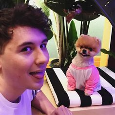 """Daniel Howell on Instagram: """"smol pup does a heckin blop with big human @jiffpom"""""""