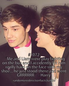 haha! oh harry. This is why I love Liam.