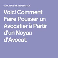 1000 id es sur le th me noyau avocat sur pinterest avocatier choux et pelures de banane. Black Bedroom Furniture Sets. Home Design Ideas