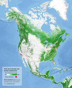 Tree Cover Density and Human Settlements Around the World