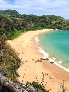 40 Best Island of Fernando De Noronha images in 2017